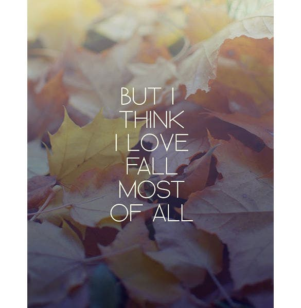 """Quotes on seasons are really awesome and profound. """".. But I think I love fall most of all…"""" is one such line that speaks volumes in few words."""