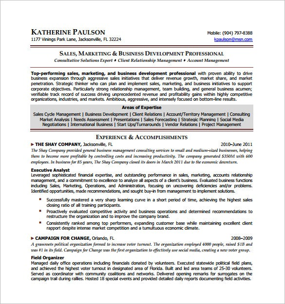 business developement director resume free pdf