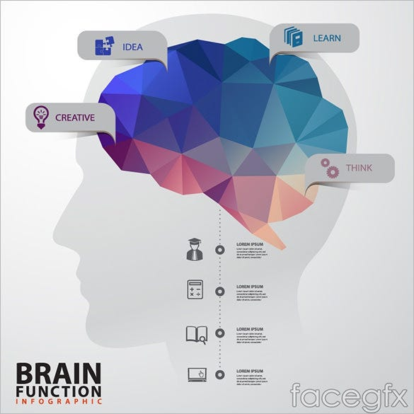 free creative brains infographic vector template