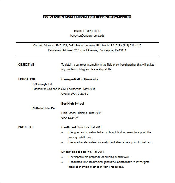 civil engineer planning resume word free download - Bridge Engineer Sample Resume