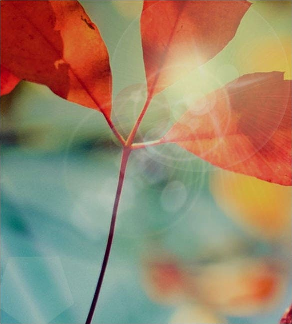amazing iphone wallpapers to download