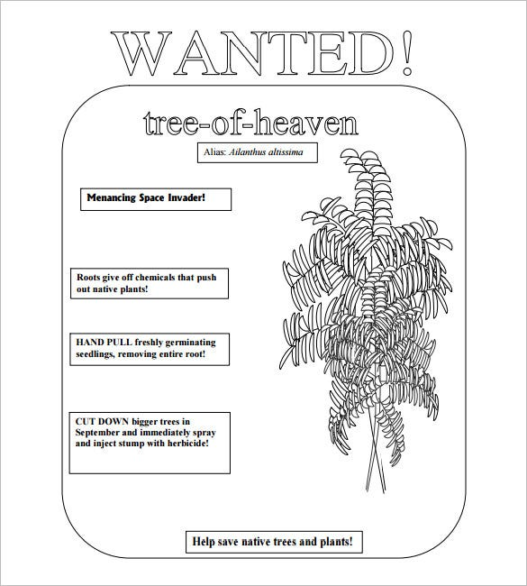 Tree Of Heaven Most Wanted Poster Template  Help Wanted Template Word