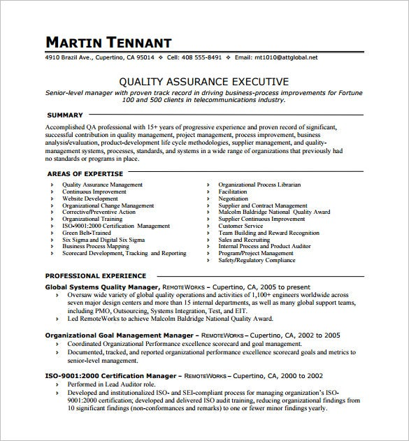 executive resume templates microsoft word 2007 quality assurance one page download examples format