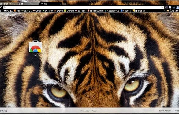 sumatran tiger theme background for chrome