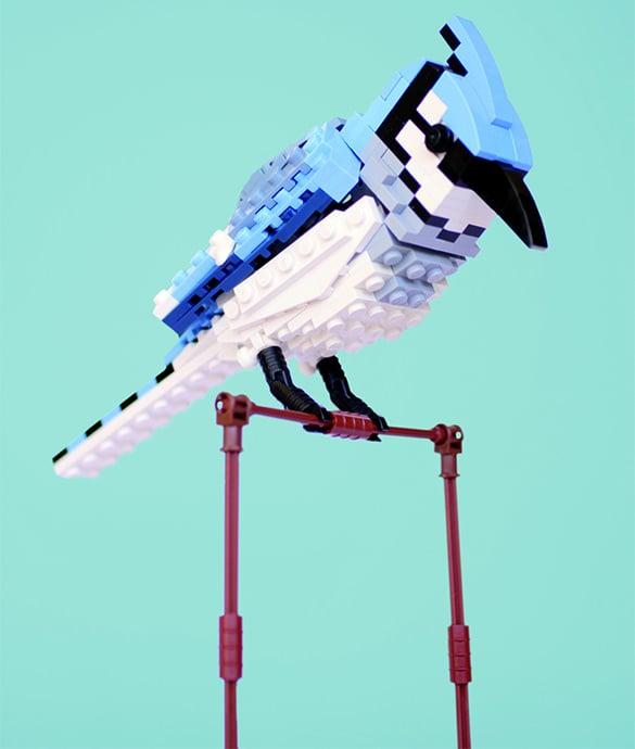 bradley the blue jay lego creation