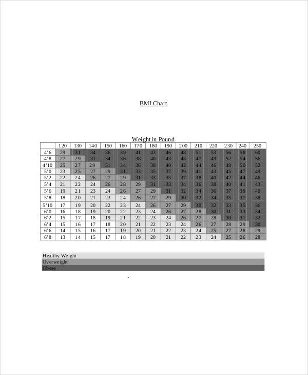 8+ Height Weight Bmi Chart Templates - Free Sample, Example