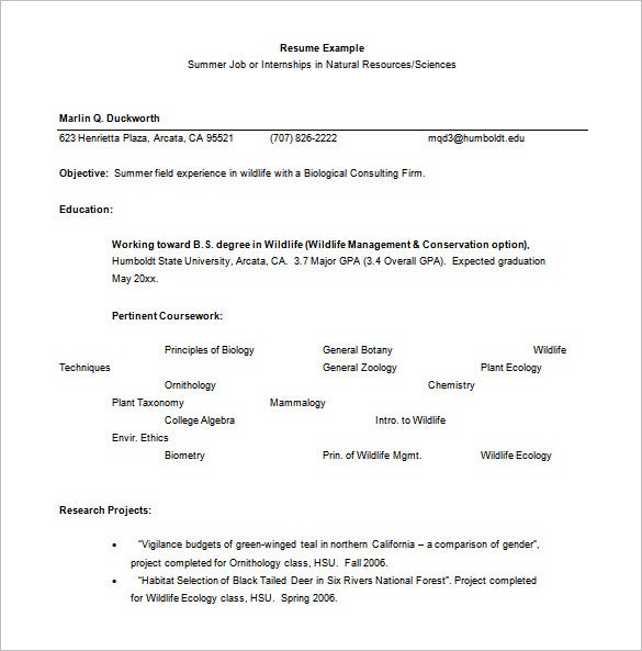 summer internship resume word free download