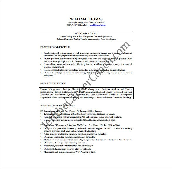 it consultant resume free pdf download - It Consultant Resume