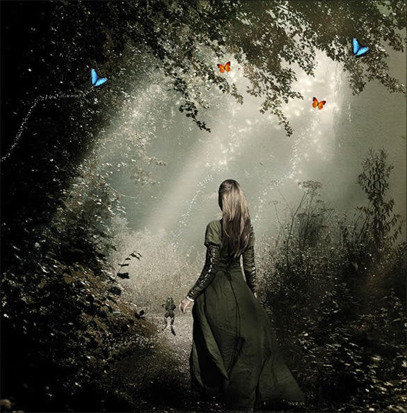 light in the forest fantasy art