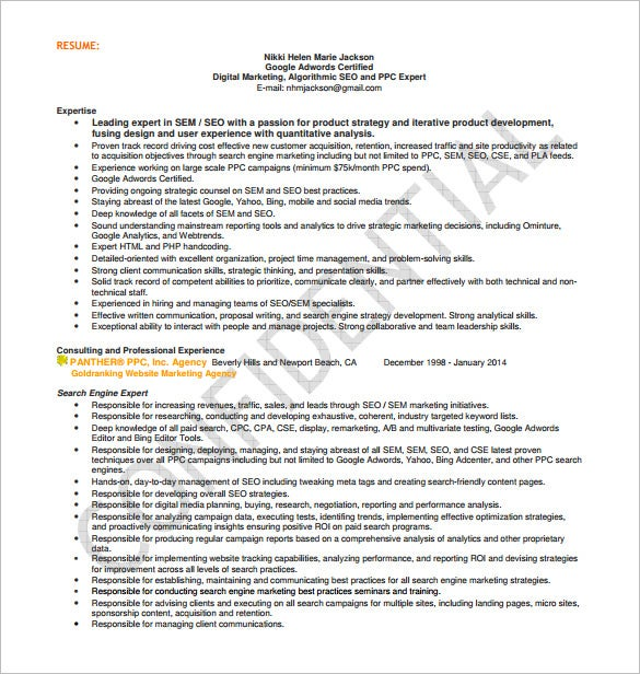 Seo Executive Resume Template   Free Word Excel Pdf Format