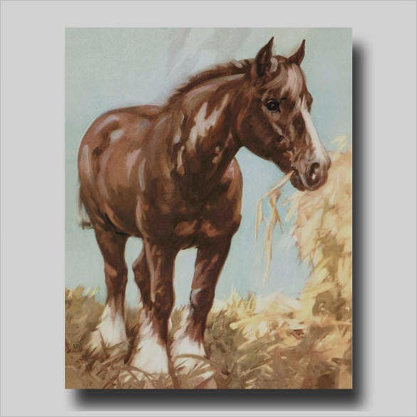 amazing horse illustration art