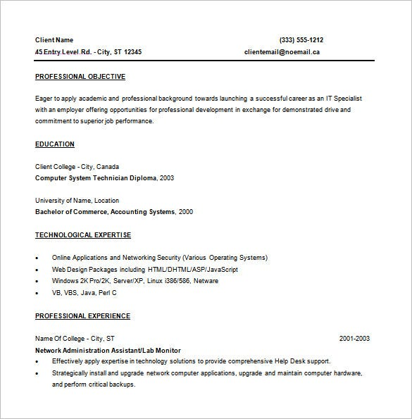 entry level programmer resume free word template - Word Templates Resume