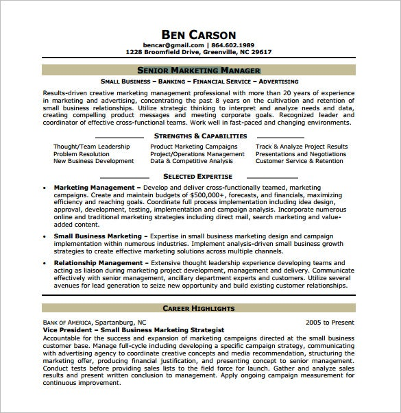 Delightful Senior Marketing Analyst Resume Free PDF  Market Analyst Resume