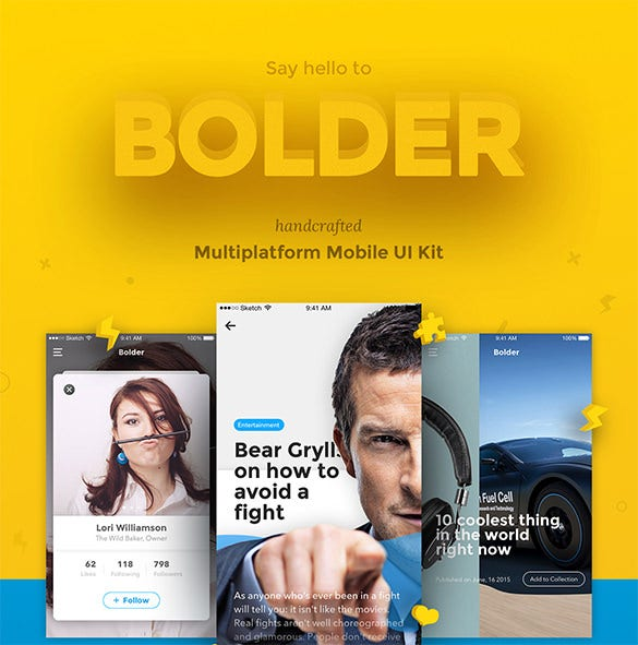 ui ux design bolder download