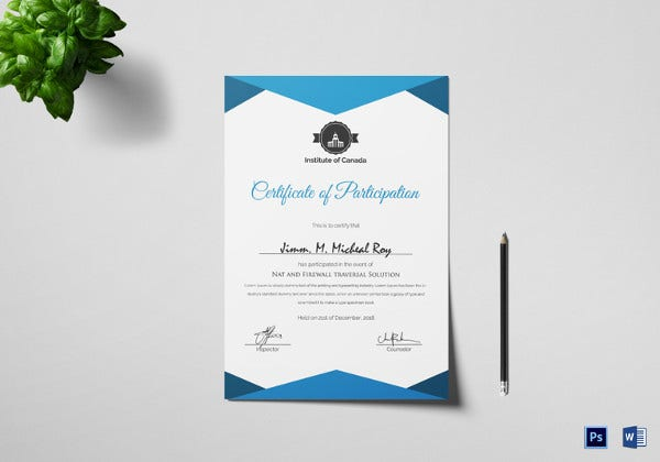 sample attractive participation certificate template
