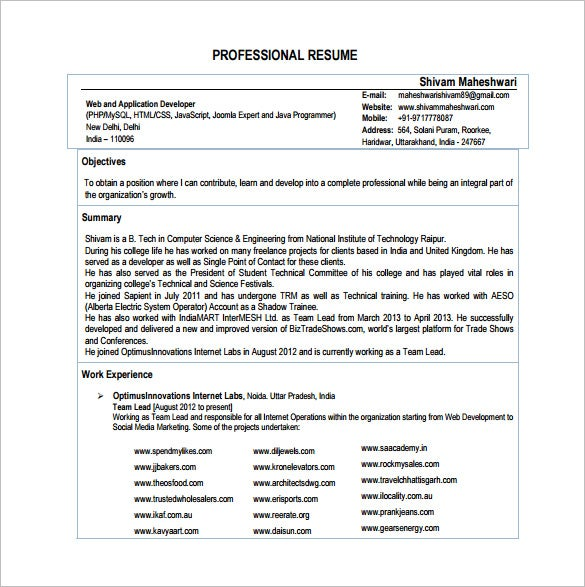 proffesional php developer resume pdf template download
