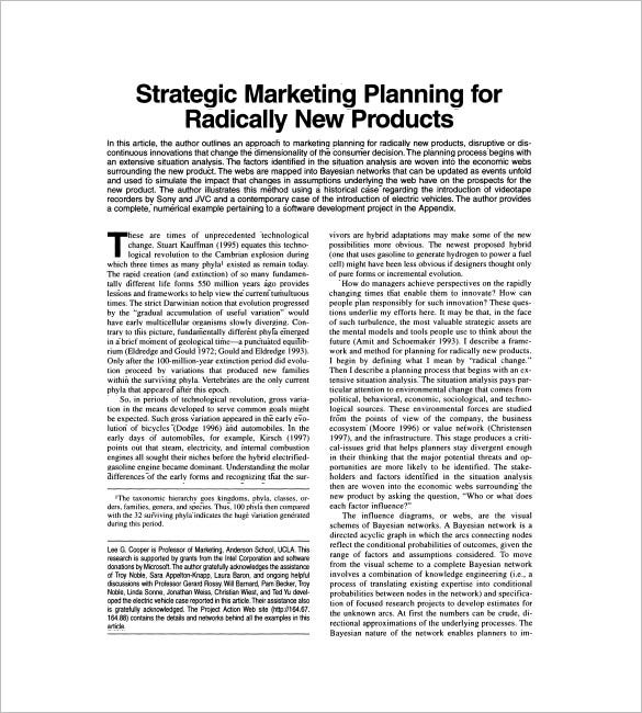 marketing plan for a new product essay