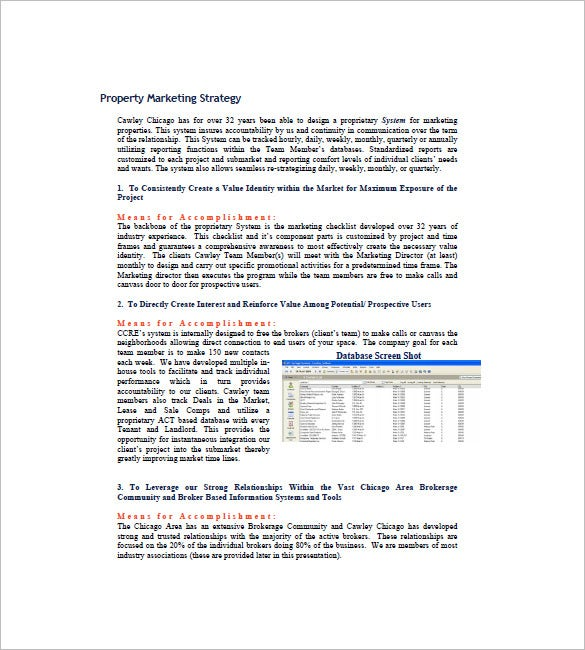 Real Estate Marketing Plan Template   Free Word Excel Pdf