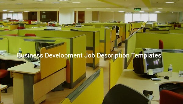 businessdevelopmentjobdescriptiontemplate