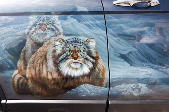 wild cat aerography design on car door