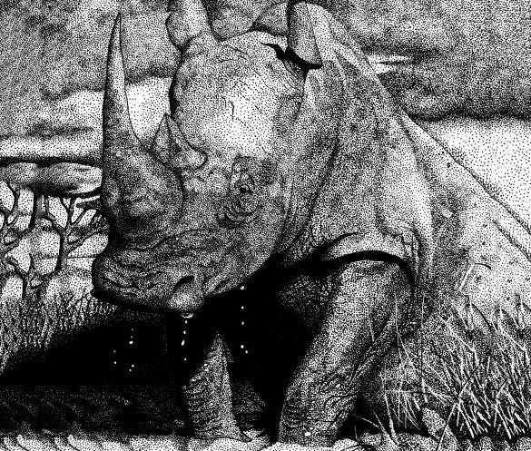 rhinoceros pointillism art