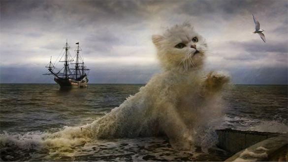 cat creativity digital painting art