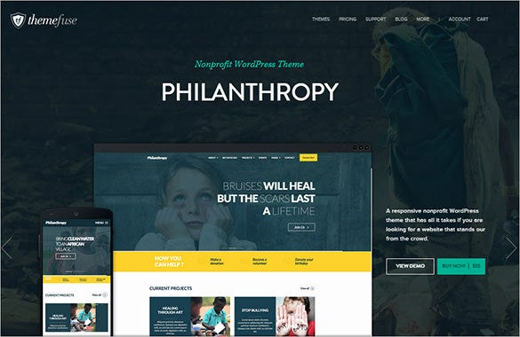 philanthropy wordpress portfolio theme