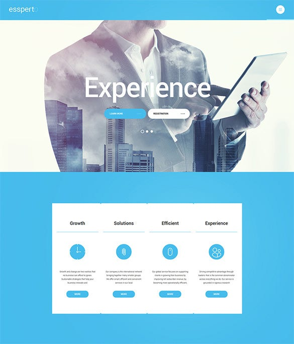 business consultant wordpress portfolio theme