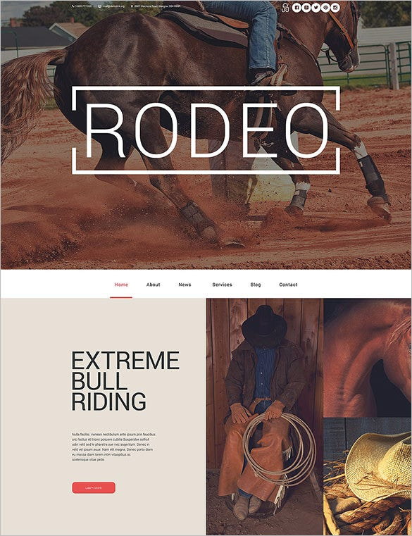horse racing professional wordpress theme