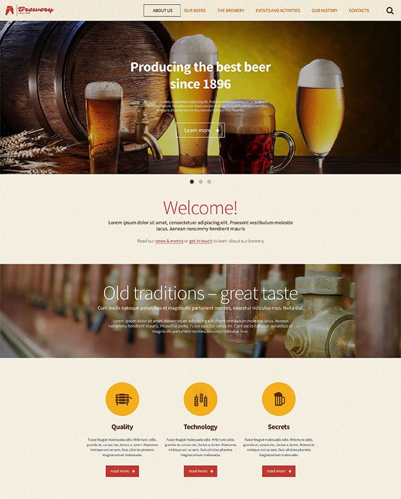 professional wordpress theme for pub