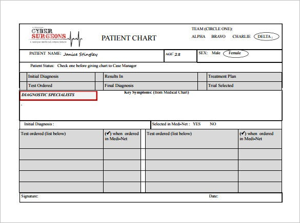 Patient Chart Template   Free Word Excel Pdf Format Download