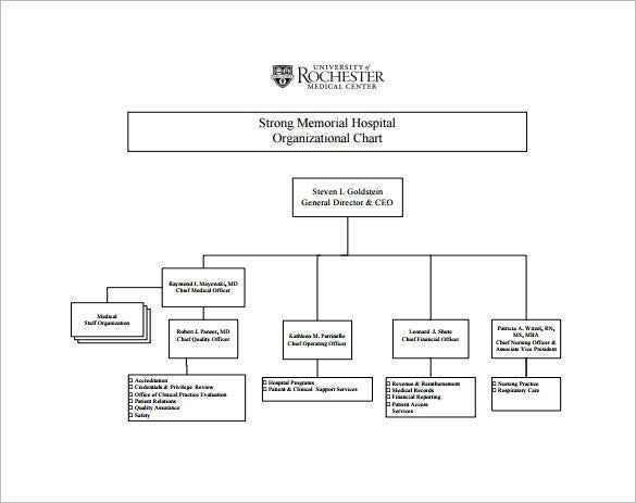 Free Hospital Organizational Chart Sample Download  Flow Chart Format In Word