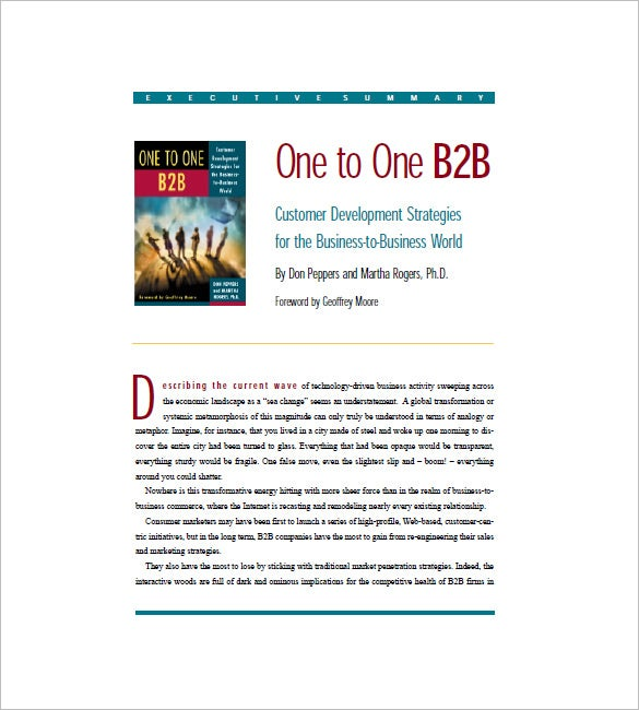 b2b marketing plan executive summary