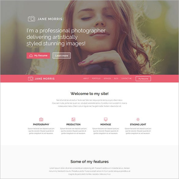 fantastic free wordpress theme