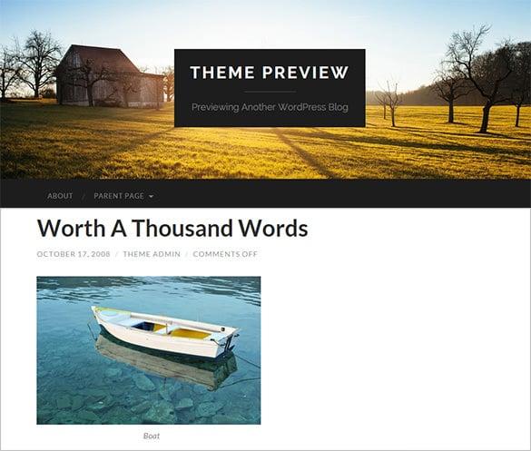 stunning free wordpress theme