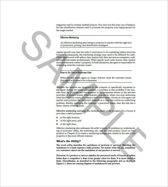 Sales And Marketing Plan Template   Free Sample Example