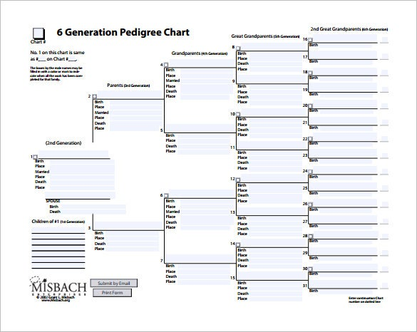6th generation pedigree chart free pdf download