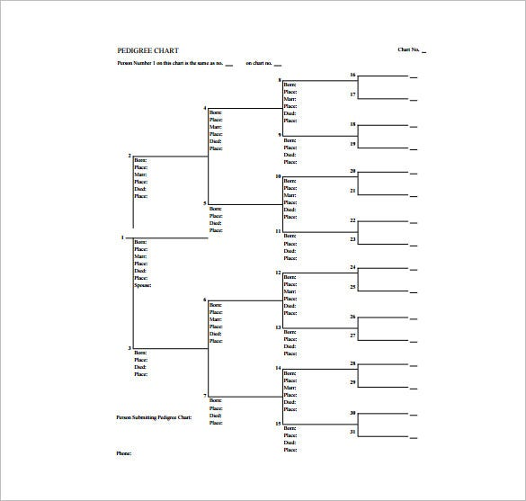 Pedigree Chart Template   Free Sample Example Format Download