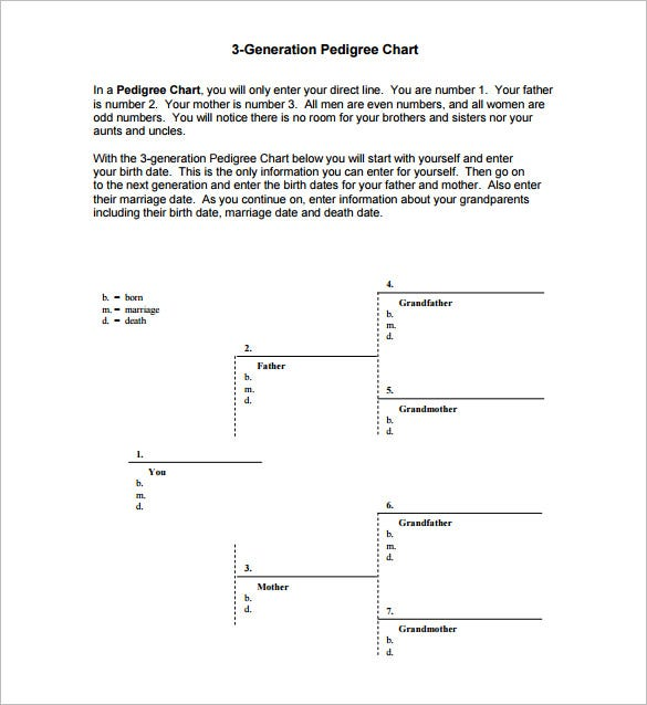 3rd generation pedigree chart free pdf template