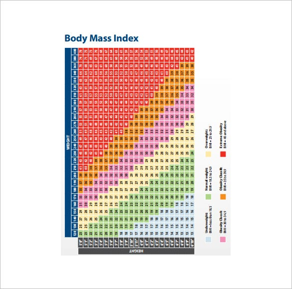 body mass index chart free pdf template download