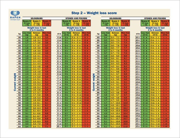 Bmi Chart Template  WowcircleTk