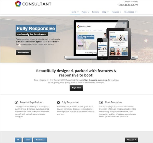 responsive multipurpose wordpress consultant theme