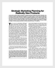 New-Product-Sales-and-Marketing-Plan-Template