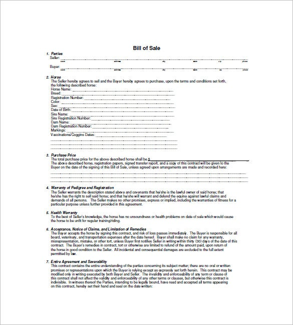 Horse Bill Of Sale   Free Sample Example Format Download