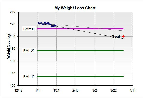 Weight Loss Chart Template   Free Sample Example Format