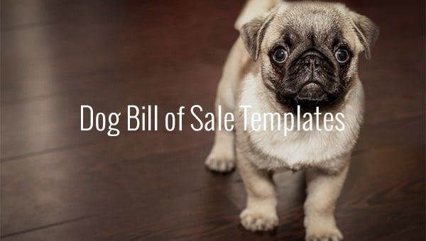 dog bill of sale templates