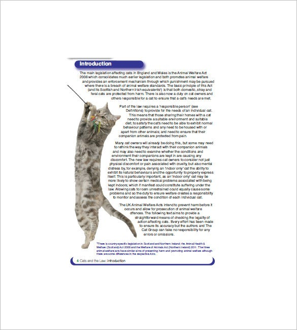 cat bill of sale template pdf