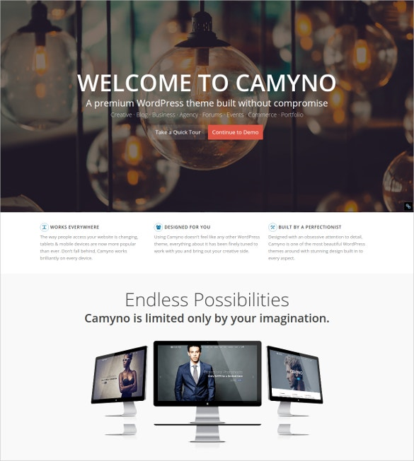 Premium Portfolio WordPress PHP Theme