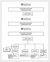 Free-Hospital-Organizational-Chart-Sample