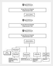 Free-Hospital-Organizational-Chart-Sample